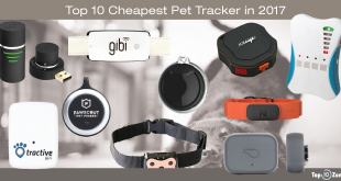 Best GPS Pet Tracker